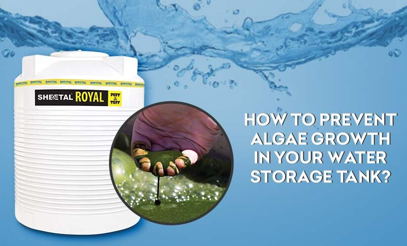 How to prevent algae growth in your water storage tank?