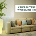 Upgrade Your Home with Blume Planters!